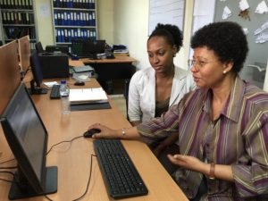 Ministry of Health staff in Mozambique learn how to use Pharmadex for medicines registration management.