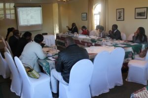 Discussing work plans at the first meeting of the NEMC in June 2014.